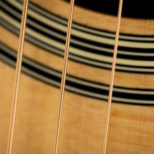Gitara akustyczna Takamine P2DC - rozeta