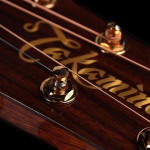 Gitara akustyczna Takamine P4DC - logo